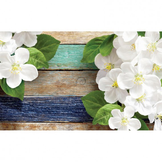Fototapeta na stenu - FT3027 - Kvety na farebnom dreve