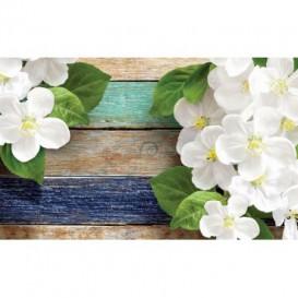 Fototapeta na zeď - FT3027 - Květiny na barevném dřevě