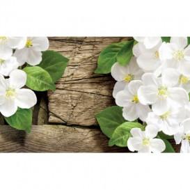 Fototapeta na stenu - FT3665 - Biele kvety