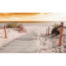 Fototapeta na zeď - FT3680 - Most na pláž při východu slunce