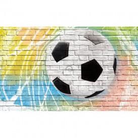 Fototapeta na zeď - FT3681 - Fotbalový míč