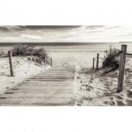 Fototapeta na stenu - FT4612 - Chodník na pláž - čiernobiely