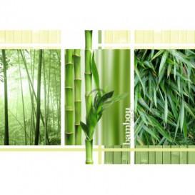 Fototapeta na stenu - FT0156 - Bambus