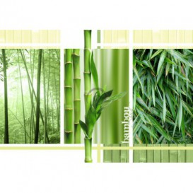 Fototapeta na zeď - FT0156 - Bambus
