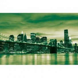 Fototapeta na stenu - FT0299 - Zelený New York