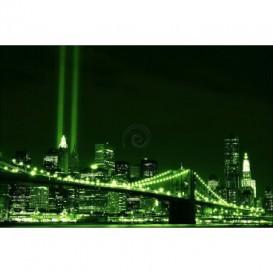 Fototapeta na stenu - FT0309 - Zelený New York