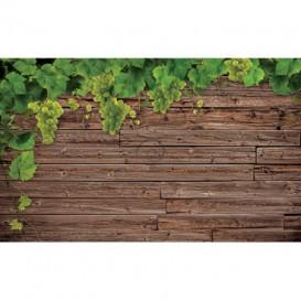 Fototapeta na stenu - FT3119 - Vinič na drevenej stene
