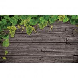 Fototapeta na stenu - FT3120 - Vinič na drevenej stene
