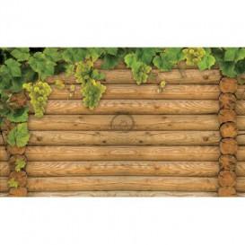 Fototapeta na stenu - FT3121 - Vinič na drevenej stene