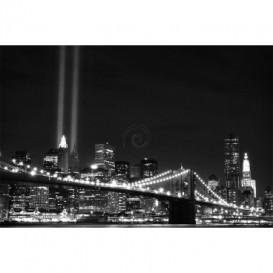 Fototapeta na stenu - FT0312 - Čiernobiely New York