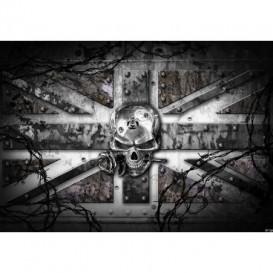 Fototapeta na stenu - FT3810 - Lebka – anglická vlajka sivá