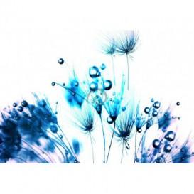 Fototapeta na stenu - FT0100 - Modré kvety