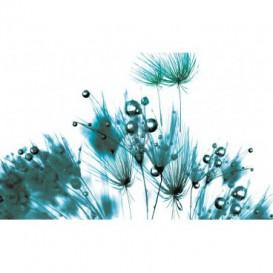 Fototapeta na stenu - FT0101 - Modré kvety
