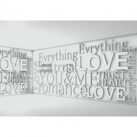 Fototapeta na stenu - FT2399 - 3D nápisy