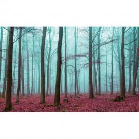 Fototapeta na stenu - FT4037 - Zahmlený les