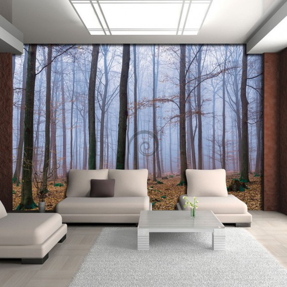 Fototapeta na stenu - FT4038 - Zahmlený les