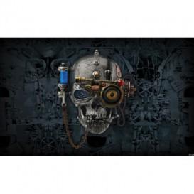 Fototapeta na stenu - FT4053 - Lebka steampunk