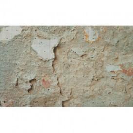 Fototapeta na stenu - FT4736 - Stena - omietka