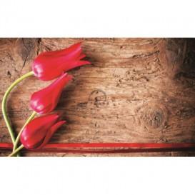 Fototapeta na stenu - FT0135 - Tulipány