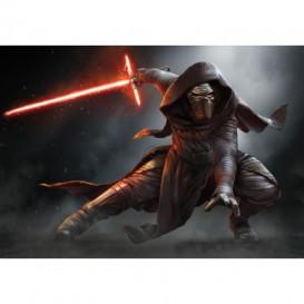 Fototapeta na stenu - FT2452 - Star Wars: Epizóda VII: Sila sa prebúdza