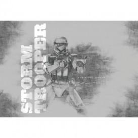 Fototapeta na stenu - FT2456 - Star Wars: Epizóda VII: Sila sa prebúdza