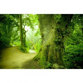 Fototapeta na stenu - FT0148 - Zelený strom