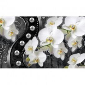 Fototapeta na stenu - FT4786 - Strieborná orchidea