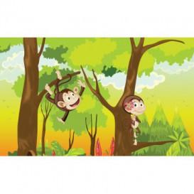 Fototapeta na stenu - FT4788 - Veselé opice