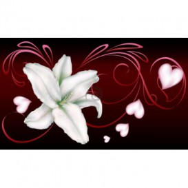 Fototapeta na stenu - FT0197 - Biely kvet