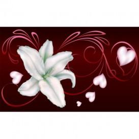 Fototapeta na stenu - FT4801 - Biely kvet na červenom pozadí