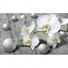Fototapeta na stenu - FT4820 - 3D orchidea