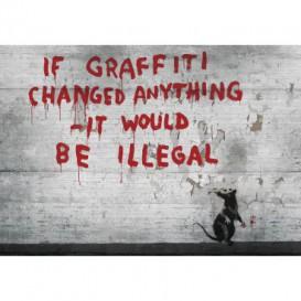 Fototapeta na stenu - FT4830 - Banksy