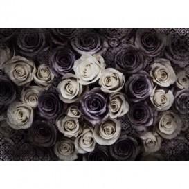Fototapeta na stenu - FT4895 - Ruže