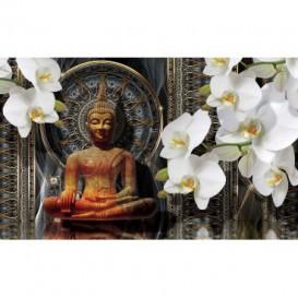 Fototapeta na stenu - FT4929 - Budha