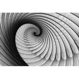Fototapeta na stenu - FT0592 - Čiernobiely twister