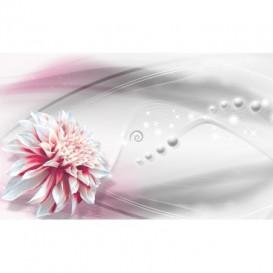 Fototapeta na stenu - FT5079 - Ružový kvet