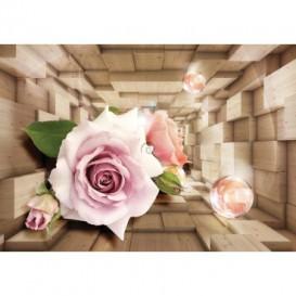 Fototapeta na stenu - FT5085 - 3D kocky s kvetmi
