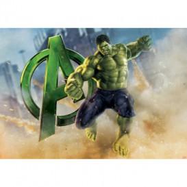 Fototapeta na stenu - FT5095 - Hulk