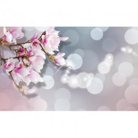 Fototapeta na stenu - FT5107 - Ružové kvety