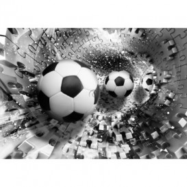 Fototapeta na stenu - FT5110 - 3D futbalová lopta