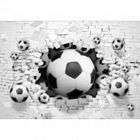 Fototapeta na stenu - FT5111 - 3D futbalová lopta