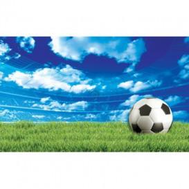 Fototapeta na stenu - FT5113 - Futbalová lopta