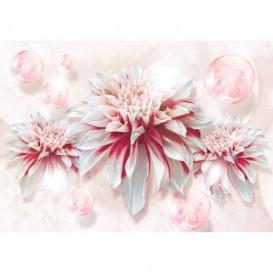 Fototapeta na stenu - FT5130 - Červeno biely kvet