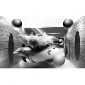 Fototapeta na stenu - FT5141 - 3D delfíny