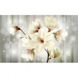Fototapeta na stenu - FT5169 - Žltý kvet