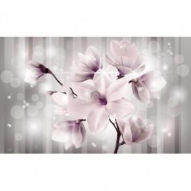 Fototapeta na stenu - FT5170 - Ružový kvet