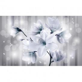 Fototapeta na stenu - FT5171 - Modrý kvet