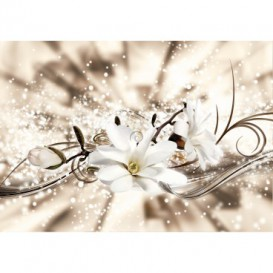 Fototapeta na stenu - FT5179 - Biely kvet