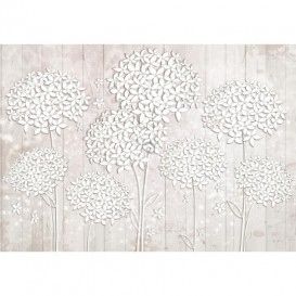 Fototapeta na stenu - FT5193 - Kvety