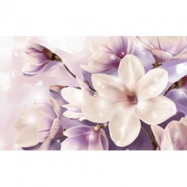 Fototapeta na stenu - FT5197 - Kvety